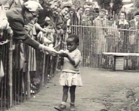 The Human Zoo in Brussels